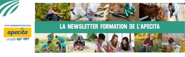 Découvrez le nouveau numéro de notre newsletter formation !