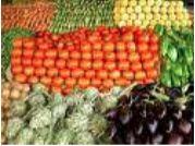 FORMATION DE TECHNICO-COMMERCIAL EN FRUITS ET LEGUMES A L'INSTITUT MEDITERRANEEN DES FRUITS ET LEGUMES