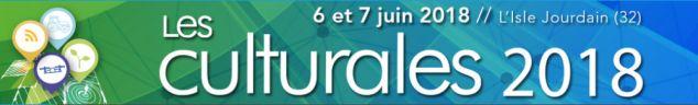 JOB DATING DES CULTURALES LE 6 ET 7 JUIN 2018 À L'ISLE JOURDAIN (32)