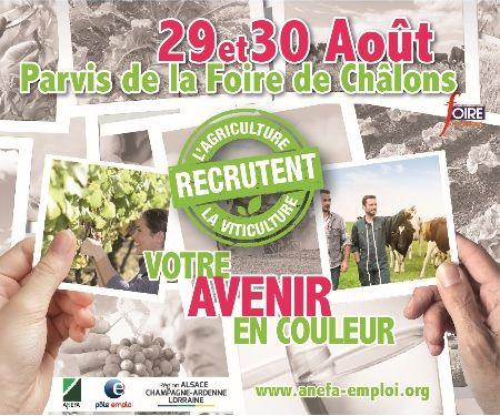 actualite les prochaines manifestations  lagriculture et la viticulture recrutent sur le parvis a foire de chalons en champagne aout