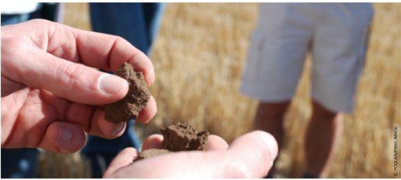 L'AGRICULTURE « NON CONVENTIONNELLE » : UNE FILIERE CREATRICE D'EMPLOIS