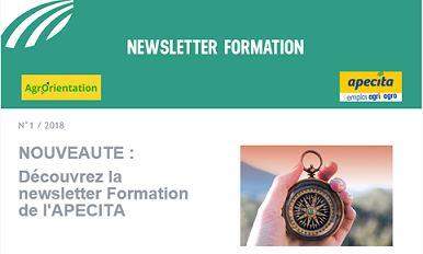Nouveau ! Découvrez la newsletter formation de l'APECITA