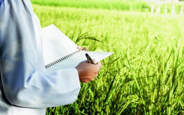 Professeur(e) / formateur(rice)