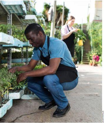 Quand l'horticulture conjugue pragmatisme et innovation