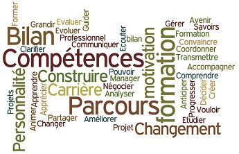 QUELLES PERSPECTIVES D'INSERTION A MOYEN TERME POUR LES DIPLOMES DU BACCALAUREAT PROFESSIONNEL AGRICOLE EN 2012 ?