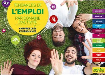 TENDANCES DE l'EMPLOI PAR DOMAINE D'ACTIVITE - Edition 2017